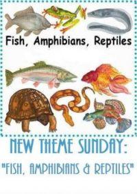 New Multi-Theme Sunday: Fish, Amphibians, Insects & Reptiles -  By Gramma Elliott