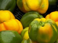 Yellow bell peppers, 80 pieces