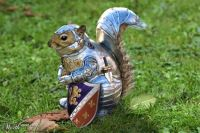 Squirrel in Armor