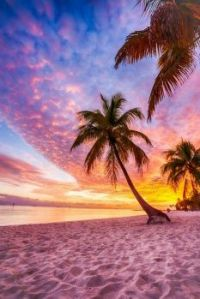 Por do sol em alguma praia do mundo !!!