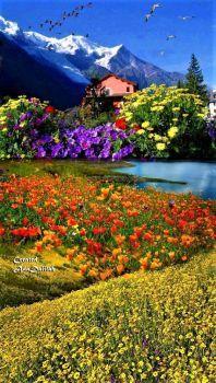 Landscape- by Ada Dalilah