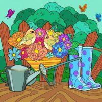 Birds, Boots & Barrow