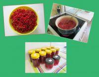 Currant jam, Rybízová marmeláda