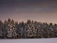 Blanketed Landscape