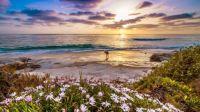 Surfer on California Beach, USA..