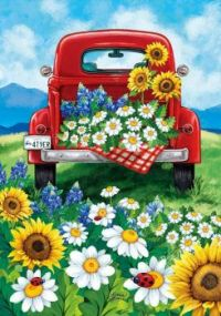 Mountains, Red Truck AND Beautiful Flowers - Does it Get Any Better?!!?