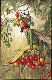 The Nightshade Berry Fairy (smaller size)