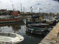 The marina this morning