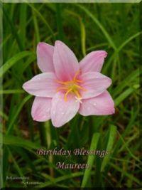Birthday Blessing Maureen