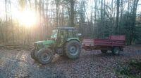 Forêt d'Orschwihr, lever du soleil
