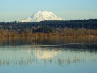 Mt. Rainier from Nisqually Refuge