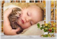 sladký spánek_167899