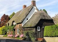 'Greensleeves' Possibly the oldest cottage in Shillingstone - Graham Rains