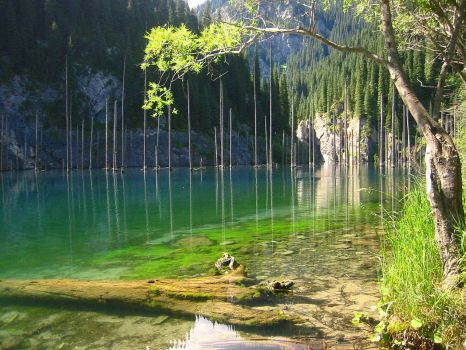 Kaindy Lake in south east Kazakhstan