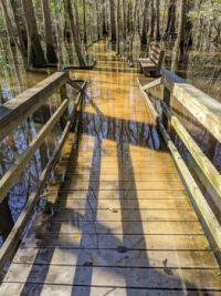 Troubled Water over Bridge