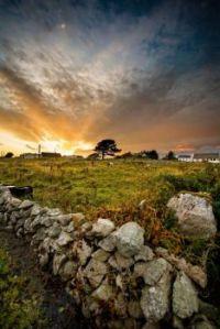 ..stone fence Ireland