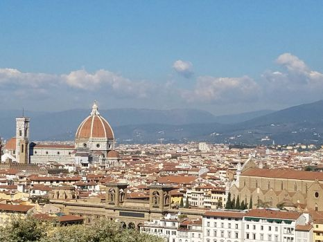 Overlooking Florence IT