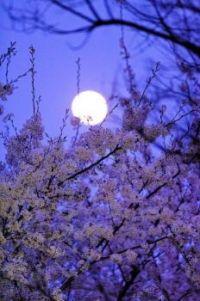 Úplněk_Full moon