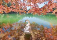 Japan lake beauty