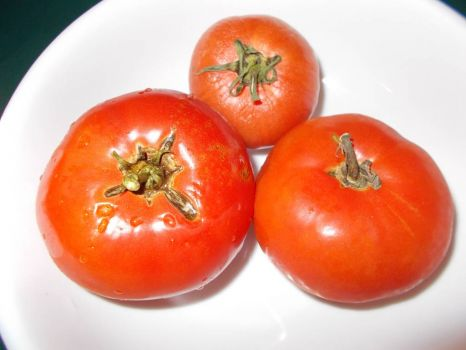 11/10/12 last of the garden tomatoes
