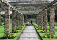 Kew Gardens-Arbor