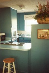 For RobbieL - The kitchen of the Galveston Bay vacation house
