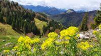 Somewhere in Tirol