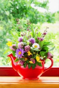 Red teapot with bouquet of healing herbs and flowers on windowsill