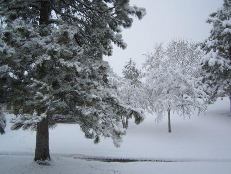Nope, winter is not over in Colorado