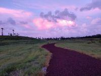 Robinson Preserve running trail, Bradenton FL