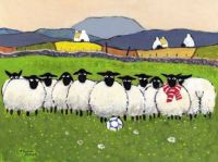 any ewe for football.