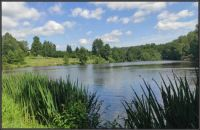 Pohled do krajiny s rybníkem...  View of the landscape with a pond ...