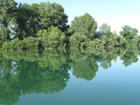 Reflections on the Soča river