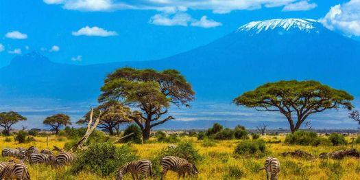Mount Kilimanjaro #3