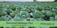 Today Is National Cabbage Day!!