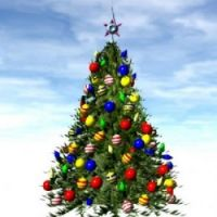christmas-trees are awesome