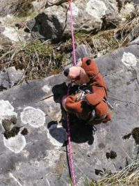 Šari Medvěd - horolezí