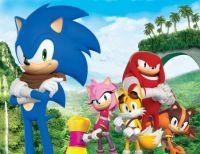 Sonic Boom Team Sonic