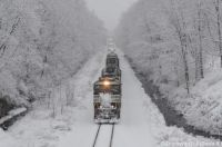 ns#6985 snow rolling
