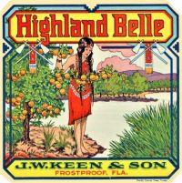 Themes Vintage ads - Florida Highland Belle Orange Citrus Fruit Crate Label