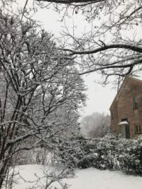 02_07_2021_Snow_scene