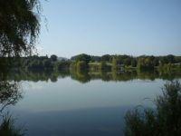 Rybník Hamry v Hrusicích