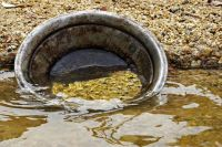 2 of 4 Gold Panning Equipment