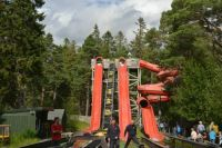 Straight down,flying bumps, or dizzy circles...take your pick!
