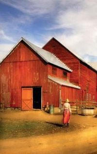 Life on the Farm With Red Barns...
