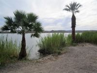 Martinez Lake, Arizona