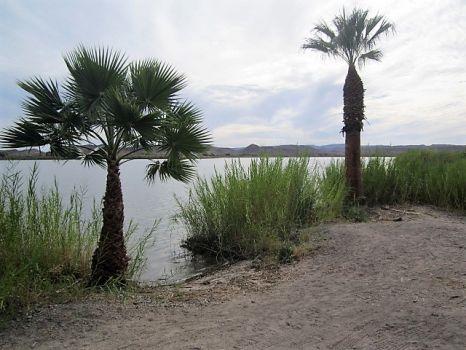 Martinez Lake, Arizona