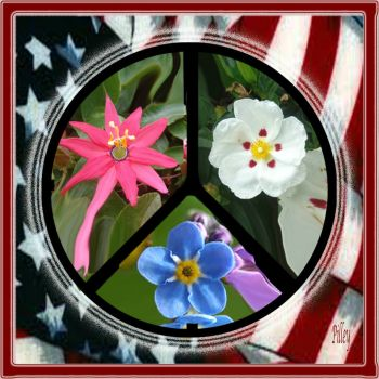 peace.FLOWERS.red.white.blue.flag