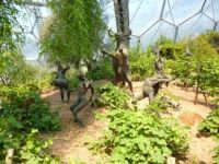 Dionysus, the Eden Project