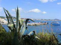 Cameo Island Laganas Greece